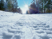 Winter road to a sun — Stock Photo