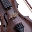 Old violin — Stock Photo