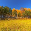 Autumn, HDRI — Stock Photo