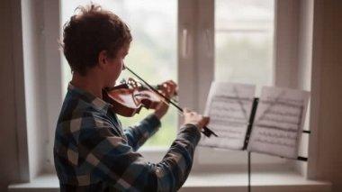 Violinist — Stock Video