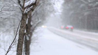 Kar kar fırtınası — Stok video