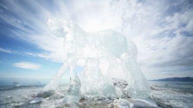 Ice Horse — Stock Video