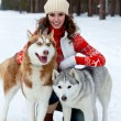Happy woman playing with siberian husky dogs in winter forest - Stock Photo