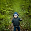 Little baby boy walking on the forest pathway.  — Стоковая фотография