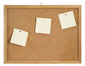 Cork board with hanger and three bulletins. clipping path. — Stock Photo