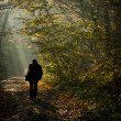 Man silhouette walking on the autumn forest road in the light of — Stock Photo