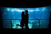 Young lovers cuddle in front of Lisbon's aquarium — Stock Photo