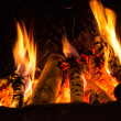 Fire in a fireplace  Fire flames on a black background — Lizenzfreies Foto