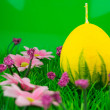 Stock Photo: Candle egg in fresh spring grass