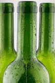 Empty green wine bottles isolated on white background — Stock Photo