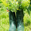 Stock Photo: Boot Flowerpot in garden
