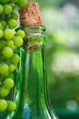Wine bottle and young grapes on nature background — Stock Photo