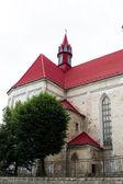 Roman Catholic Church of Saints Peter and Paul in Berezhany Ukraine — Stock Photo