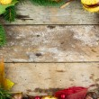 Frame with nuts, acorns, chestnuts autumn fruits — Stock Photo
