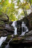 Orman şelale ve yosun kaplı kaya — Stok fotoğraf