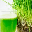 Green Organic Wheat Grass Juice ready to drink — Stock Photo #33453591