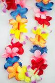 Colored Hawaii lei — Stock Photo