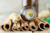 Essential oil with cinnamon — Stock Photo