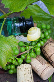 Wine bottle with grapes, snail and corks — Stock Photo