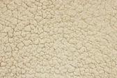 Wolle-textur — Stockfoto