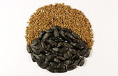 Sunflower and brown seeds — Stock Photo