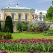 Stock Photo: Palace in Pushkin