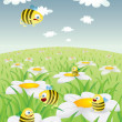 Daisy Field With Honey Bees — Stock Vector