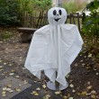 Halloween ghost — Stock Photo #33228933
