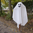 Halloween ghost — Stockfoto