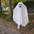 Stock Photo: Halloween ghost