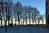 Landscape. trees. backlight. streetlights. lights. evening. winter. of December. people. Outdoor — Stock Photo
