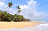 Coast of the Indian Ocean — Stock Photo