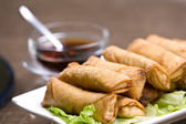 Fresh vegetable spring rolls — Stock Photo