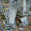 Ancient graves of dying Karaites.Karaite Cemetery Balta-T - Stock Photo