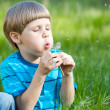Beautiful cute boy in the park blowing on dandelion in summer ti — Stock Photo #22766500