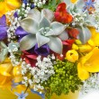 Beautiful bouquet of freesias, succulent, gypsophila — Stock Photo