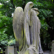 Sad angel statue on old cemetery — Stock Photo #49650441