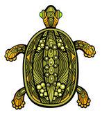 Fancy Turtle — Stock Vector