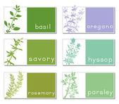Titled Stickers With Herbs — Stock Vector