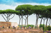 House of Augustus Domus Augustana Palatine Hill in Rome — 图库照片