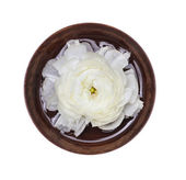 Spa white flower in wooden bowl with water, isolated — Stock Photo