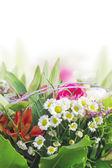 Daisy, lily, rose bouquet floral frontière, isolé — Photo