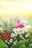 Colorful flowers on sunny background — Stock Photo