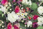 Background of summer flowers — Stock Photo