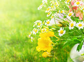 Sunny bunch with yellow freesias flowers on grass — Stock Photo
