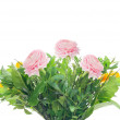 Bunch with pink buttercups and greens, isolated — Stock Photo
