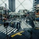 Crosswalk in Shibuya when raining, Tokyo — Stock Photo #34719897