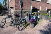 Bicycles with flowers, Amsterdam — Stockfoto