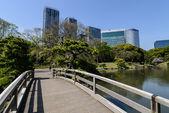 Parco a tokyo — Foto Stock