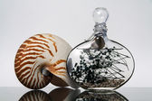 Nautilus And Bottle — Stock Photo
